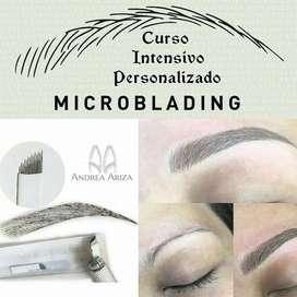 Microbleding 3d - curso intensivo !!