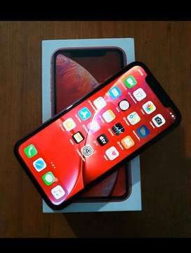 Iphone Xr excelente estado