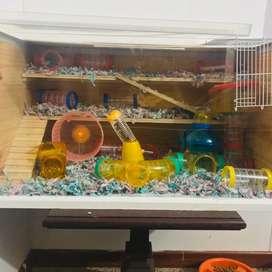 Jaula hamster