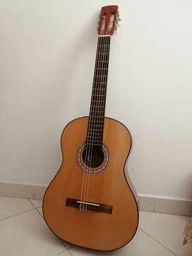 Guitarra Acústica NUEVA!