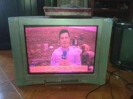 Televisor barrigon