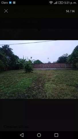 Venta de 5 hectáreas de Tierra