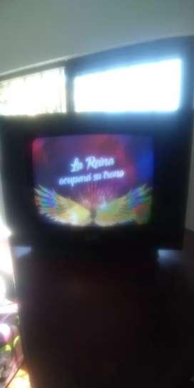 Se vende tele de 14