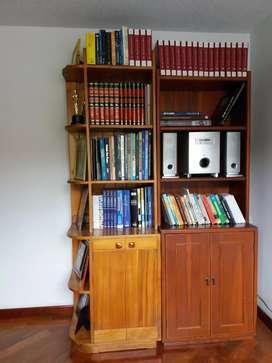 Biblioteca en Madera dos Modulos con libros