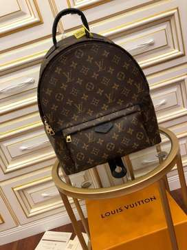 Mochila marrón Louis Vuitton