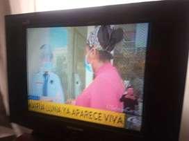 TV televisor