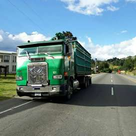 Camion Doble Eje Chato Freightliner