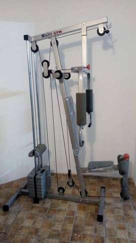 Multigimnasio Randers y barras de ejercitacitación