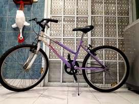 Bicicleta mountain bike rodado 24 lista para usar