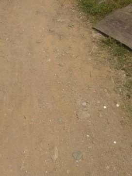 Parcela moroso lebrija