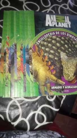 Coleccion libros de dinosaurios
