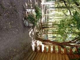 cabañas de tronco macizo en Las Flores