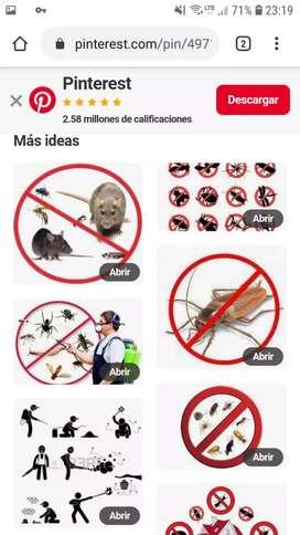 Servicio de control  de  plaga   fumigacion    cucaracha.  Grillo.. mosquito.  Termina.. pulga..  ratas  ratones  tlf
