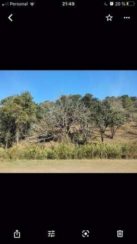 Dueño : Vendo terreno raco