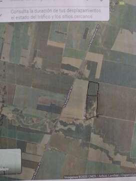 Terreno apto para agricultura