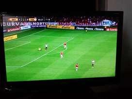 TV LED HD 24' 8 meses de uso