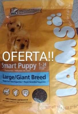 Oferta alimento súper premiun IAMS para cachorros