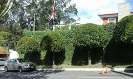 Se cuida fincas mantenimiento y arreglos trabajos en jardineria instalación de sistemas de riego abonos fumigación