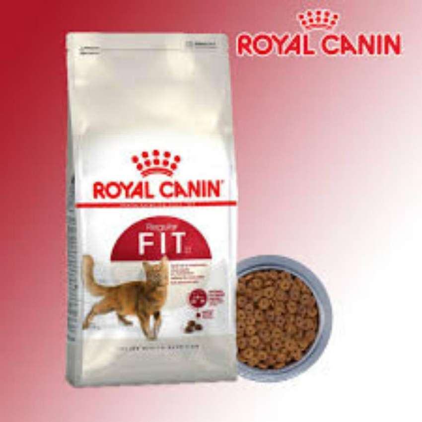 Royal Canin Fit 32 Gato Adulto 2 Kg 0