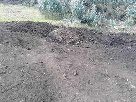 Venta de tierra negra para viveros