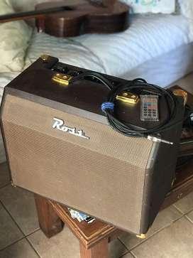 ROSS Acoustic 25c
