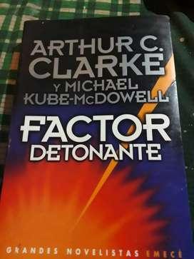 FACTOR DETONANTE (usado grande)