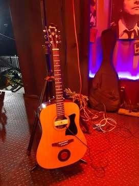 Guitarra Ibanez V50NJP con mic Seymour Duncan SA3HC