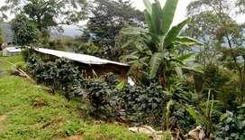 hermosa finca ubicada en silvania cundinamarca 13000mt cuadrados