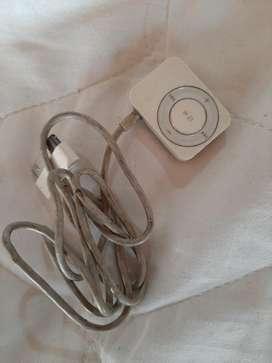 Radio iPod