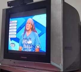 Vendo Televisor Panasonic 21 pulgadas