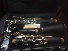 Vendo Clarinete levemente usado