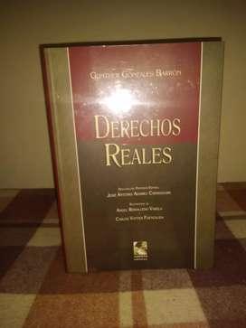 Derechos Reales - Günther González Barrón (JURISTA EDITORES)