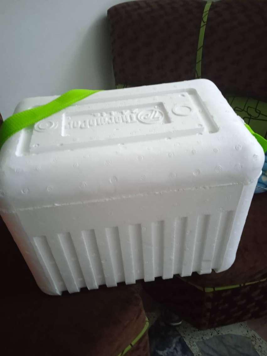 Nevera icopor 20 litros
