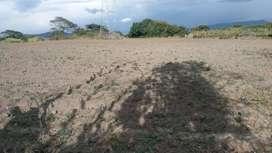 Vendo Terreno En Chaltura