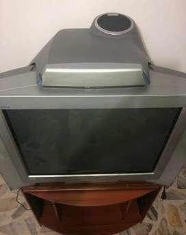 Vendo Tv con Equipo Sonido Incorporado