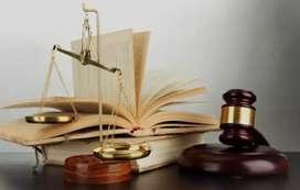 Practicante Ad Honorem de derecho