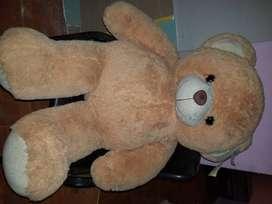 Hermoso oso de peluche