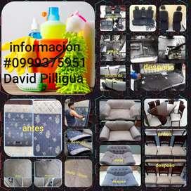 Lavada de muebles y sillas de comedor Y colchones y tapicería de carro