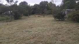 Vendo terreno de 17 de ancho x 50