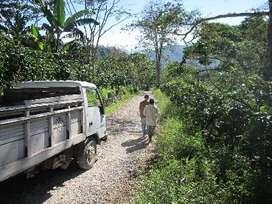 Terreno agrícola de 338 ha en San Ramón, Chanchamayo