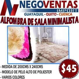 ALFOMBRA DE SALA MINIMALISTICA EXCLUSIVAMENTE EN DESCUENTO SOLO EN NEGOVENTAS