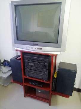 Venta Televisor PanaBlack- Panasonic, equipo de sonido con mueble incluido