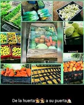 Verduras frescas y organicas