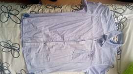 Camisa Roottco