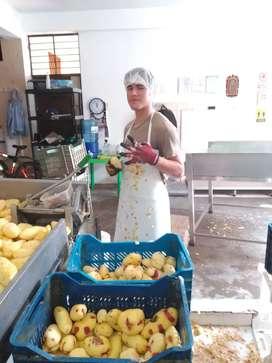 Necesitas urgente joven trabajador de preferencia peruano para producción de papas peladas distrito comas