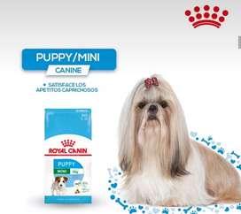 Royal canin perros raza pequeña cachorros 4kg
