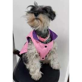 Se venden Hermosos Chalecos doble faz para perritos y gaticos