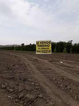 Venta Terreno Cañete