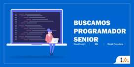 Programador Visual Basic 6 y SQL