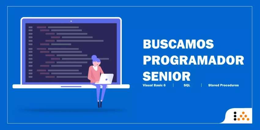 Programador Visual Basic 6 y SQL 0